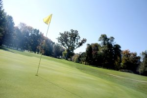 Shelby Country Club